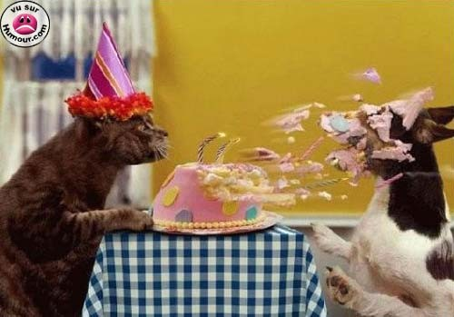 Musketari Joyeux_anniversaire