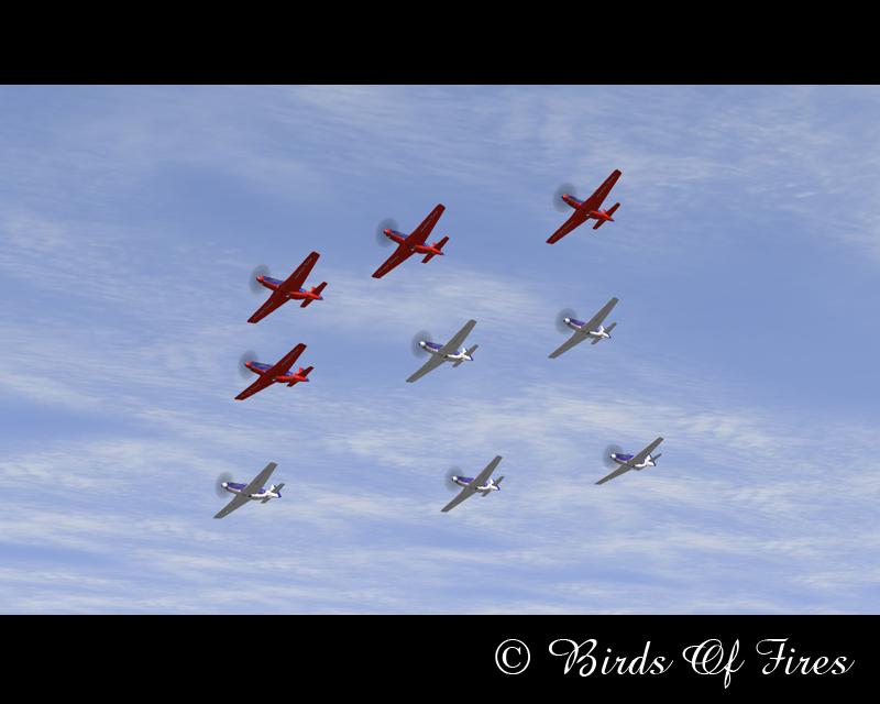 Patrouille Virtuelle de Voltige Birds Of Fires BirdsOfFires12