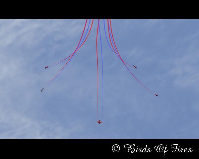 Patrouille Virtuelle de Voltige Birds Of Fires BirdsOfFires14