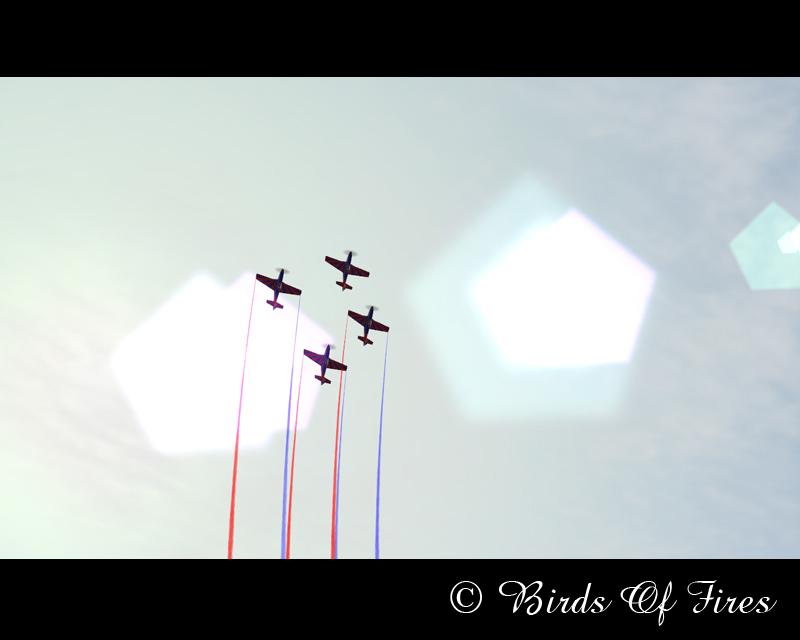 Patrouille Virtuelle de Voltige Birds Of Fires BirdsOfFires16