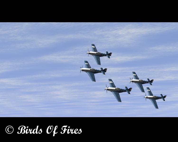 Patrouille Virtuelle de Voltige Birds Of Fires Birdsoffires0005