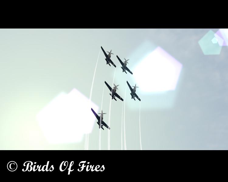 Patrouille Virtuelle de Voltige Birds Of Fires Birdsoffires0051