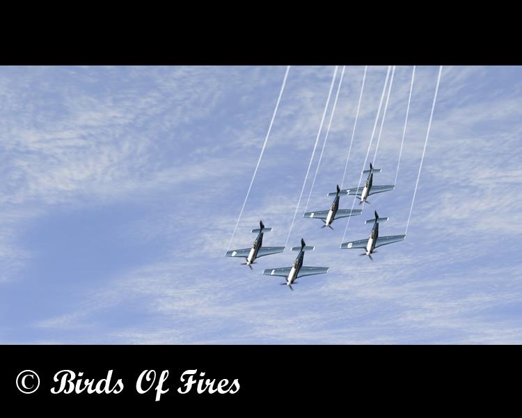 Patrouille Virtuelle de Voltige Birds Of Fires Birdsoffires0062