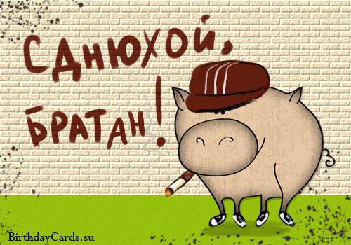 Поздравления Otkrytka-s-dnyuxoj-bratan-s-veseloj-i-modnoj-svinkoj