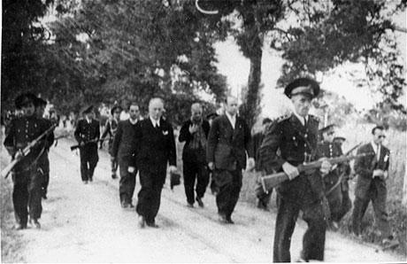 Mariscal Ion Antonescu Preview6