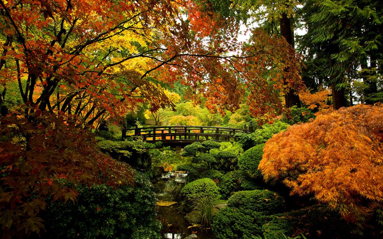Vrtovi - Page 4 Portland_japanese_garden_craig_mitchelldyer