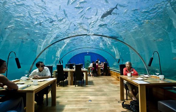 les éléments - Page 4 Undersea-restaurant