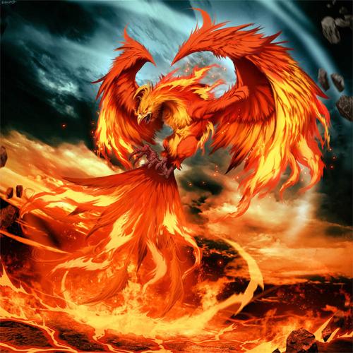 Les membres se présentent - Page 3 2-phoenix