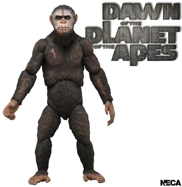 [NECA][Tópico Oficial] Planet of the Apes: Series 3 Dawn-of-the-Planet-of-the-Apes-Series-1-Action-Figure-Caesar-01