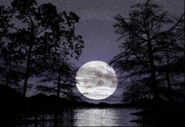 Regala algo a la forera de arriba Luna_noche
