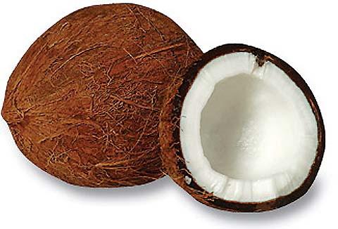 ملف كامل عن أهم الزيوت والأعشاب المفيدة لصحة الشعرك        0617-01coconut