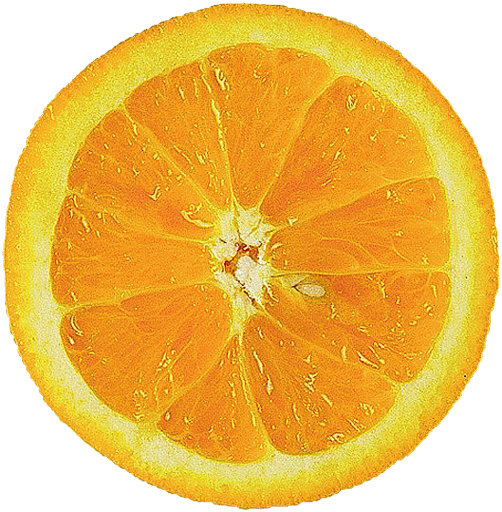 Fleurs,....fruit,.....tout ce qui se mange,...se boit....ou qui vient de la nature.......... Orange