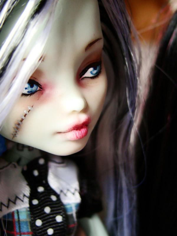 Nos demoiselles (Monster High custo) DSC03342