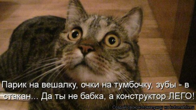 Котоматриця!)))) - Страница 10 226676_517622