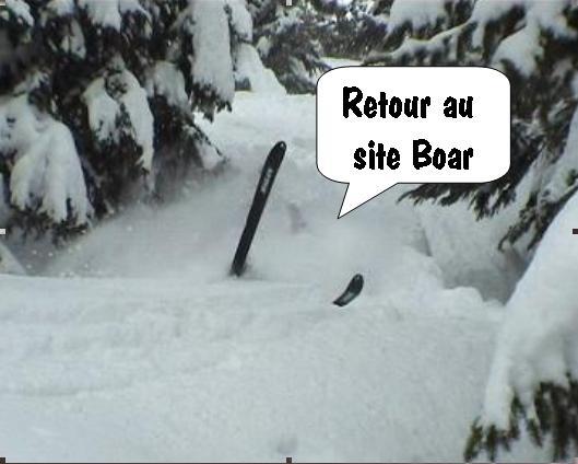 Retour au site Boar