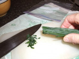 How to Freeze Your Harvest Freezing-chive-cigar-jm-web-300x225