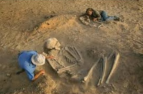 Grave Of A GIANT Medieval Warrior Unearthed In Germany Huge-Human-Skeleton