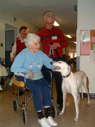 Как собаки излечивают от аутизма. 20080326-grey_therapy