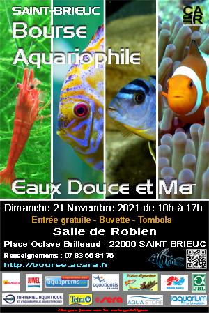 Bourse ACARA St-Brieuc (22) Dimanche 21 Novembre 2021 Bourse_aquariophilie_2021f