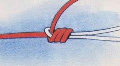 Compendio Ilustrado con Diversos Nudos / Muy completo Bristolknot4