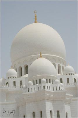 مسجد الشيخ زايد بن سلطان آل نهيان رحمه الله %D9%85%D8%B3%D8%AC%D8%AF
