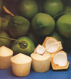 ALIMENTATION-HYGIENE  DE VIE/ PROPER FOOD DIET- Coconut