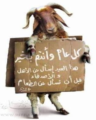 عيدكم مبارك وسعيد 3allouche