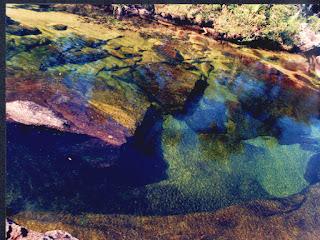 El rio de los 7 colores! Alucinacion