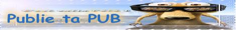 Formulaire Publie-ta-pub.forumgratuit.org_468x60