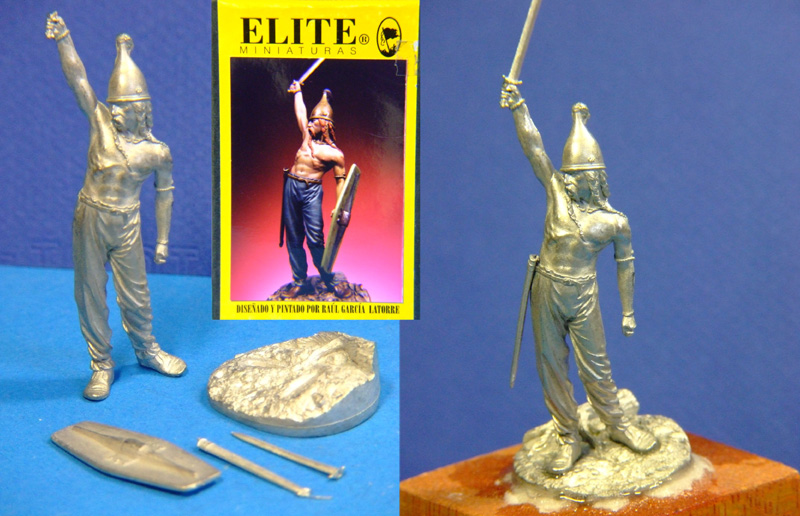 celtic warrior (élite miniatures) Celticwarriorweb