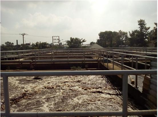 xu-ly-nuoc-thai - [Toàn quốc] Mua bùn vi sinh xử lý nước thải Cong_ty_nuoi_cay_vi_sinh-_cong_ty_moi_truong_binh_minh2