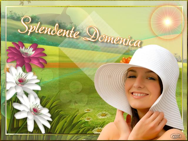 DOMENICA 25 NOVEMBRE - Pagina 4 Splendente-Domenica-dx8