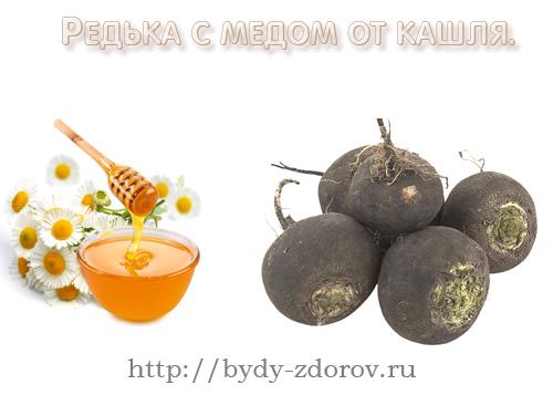 Красота и здоровье Redka-s-medom-ot-kashlya.