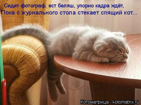 Маленький столик за углом - Том II - Страница 3 1391186735_bratja-menshie-i-ih-druzja-30