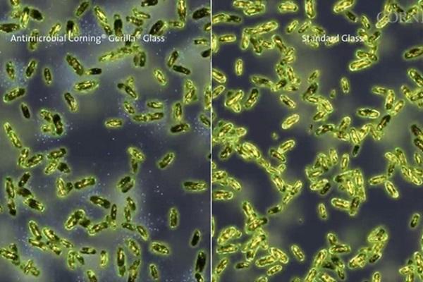 تقنية جديدة قد تجعل من هاتفك أكثر أماناً ضد الميكروبات  Antimicrobialgorillaglass_large1