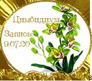 СаНата 81a19ab3cc1d