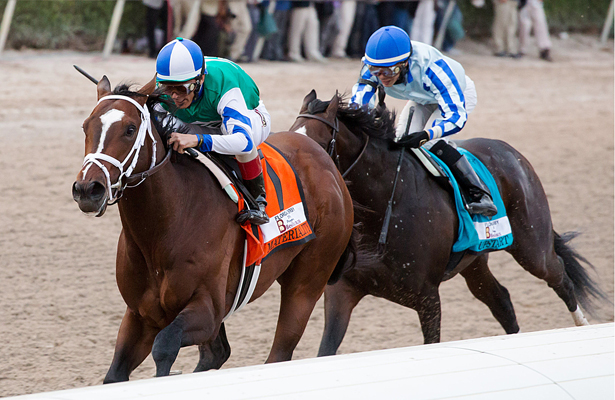 Route du Kentucky Derby/Kentucky oaks 2015 - Page 2 Materiality_Florida_Derby_2015_615x400_orig