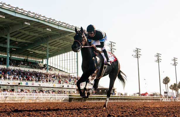 Route vers la (31e) Breeders' Cup 2014 - Page 2 Shared_Belief_Los_Alamitos_2014_615x400_orig