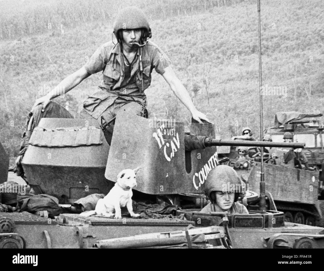 Vietnam War 1954-1975 Vietnam-war-11th-cavalry-nthe-canine-mascot-of-a-us-eleventh-armored-FFA41R