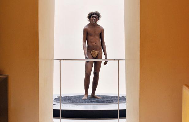 Les origines des Néandertaliens datent d'au moins 430.000 ans  Article_neandertal