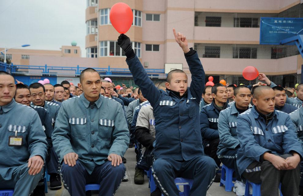 سنة 2009 السنة الصينية -سنة الثور N23_17723837