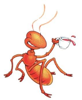 Dicas caseiras, que podem ser úteis! Ants
