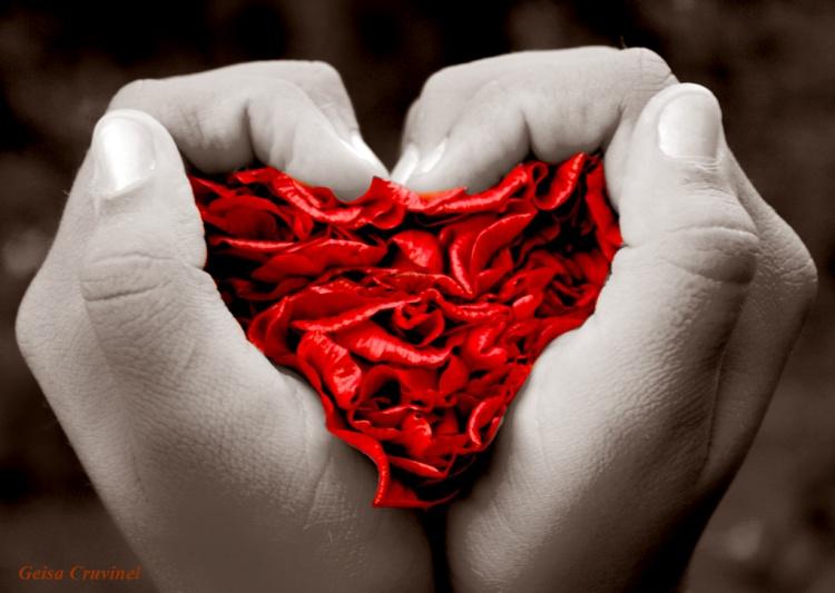 COORDINANDO LA ULTIMA PALABRA - Página 8 Eu-queria-ser-amor-geisa