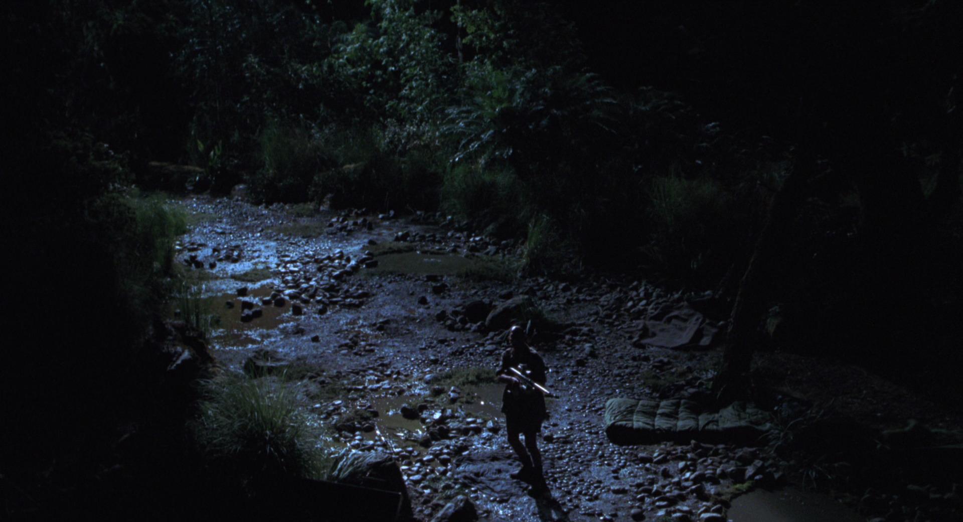 The Lost World Jurassic Park Screencaps are here Jurassic-lost-world-movie-screencaps.com-10072
