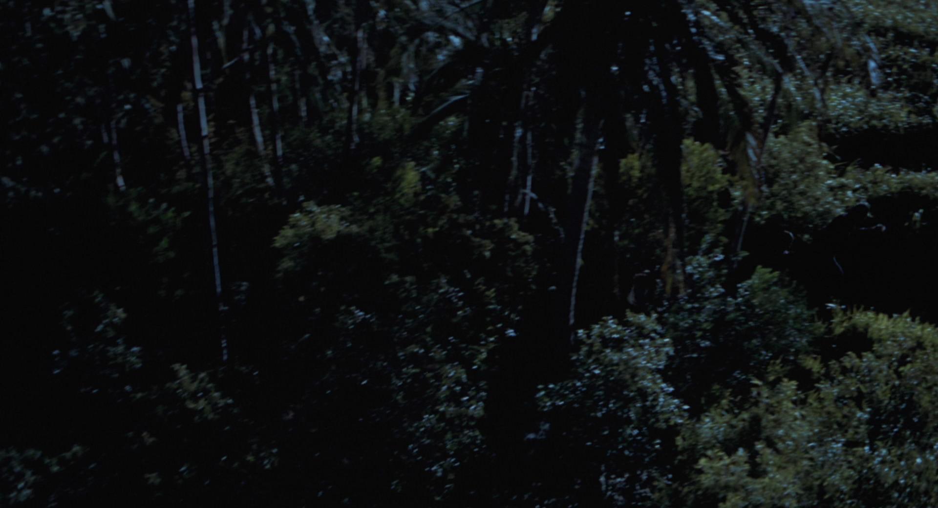The Lost World Jurassic Park Screencaps are here Jurassic-lost-world-movie-screencaps.com-10369