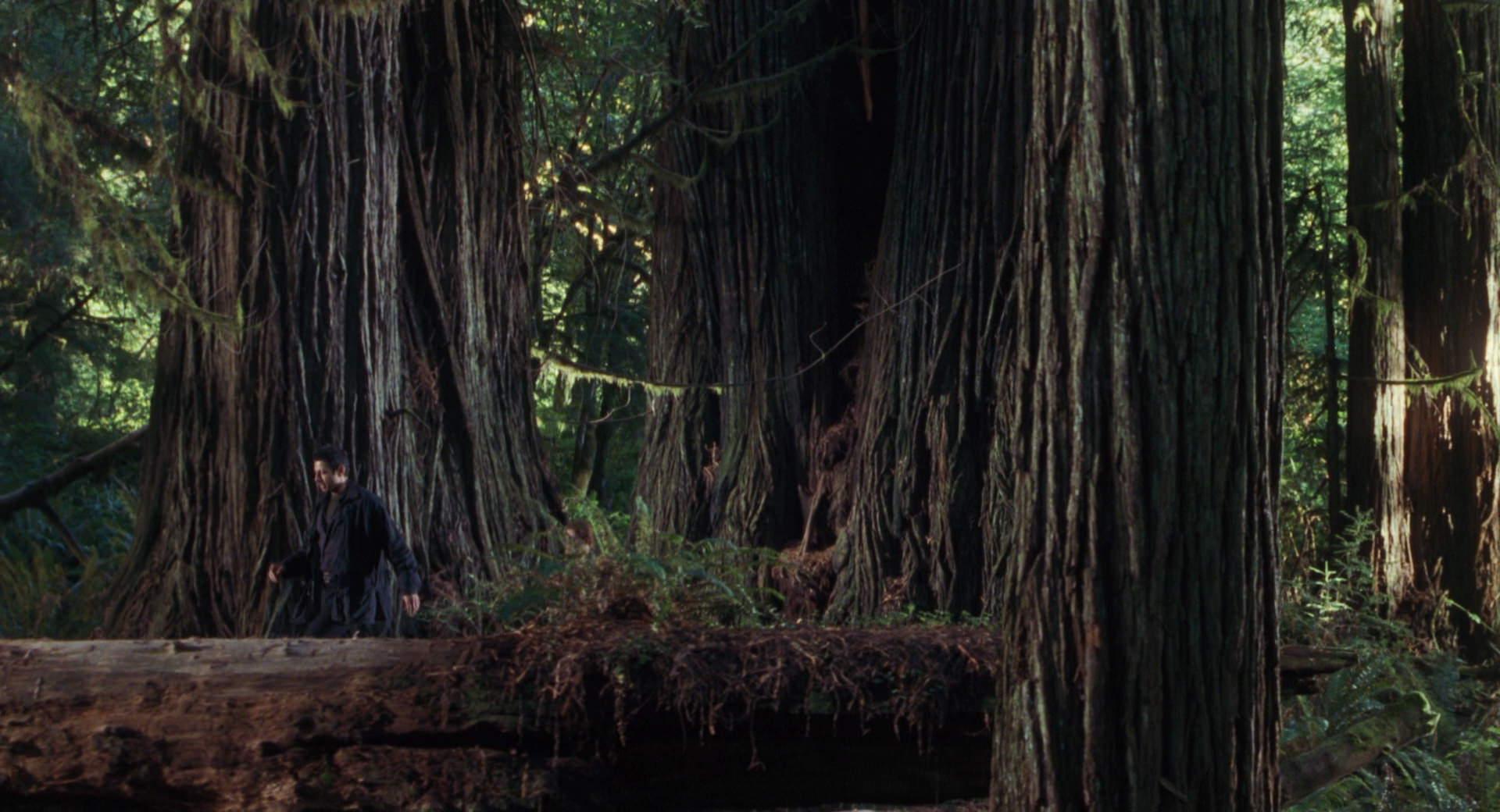 The Lost World Jurassic Park Screencaps are here Jurassic-lost-world-movie-screencaps.com-3276