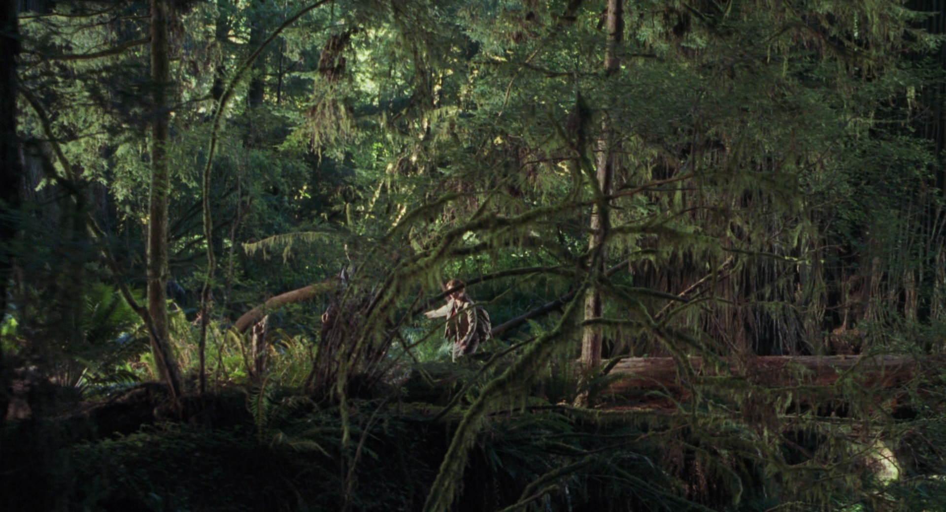 The Lost World Jurassic Park Screencaps are here Jurassic-lost-world-movie-screencaps.com-3308