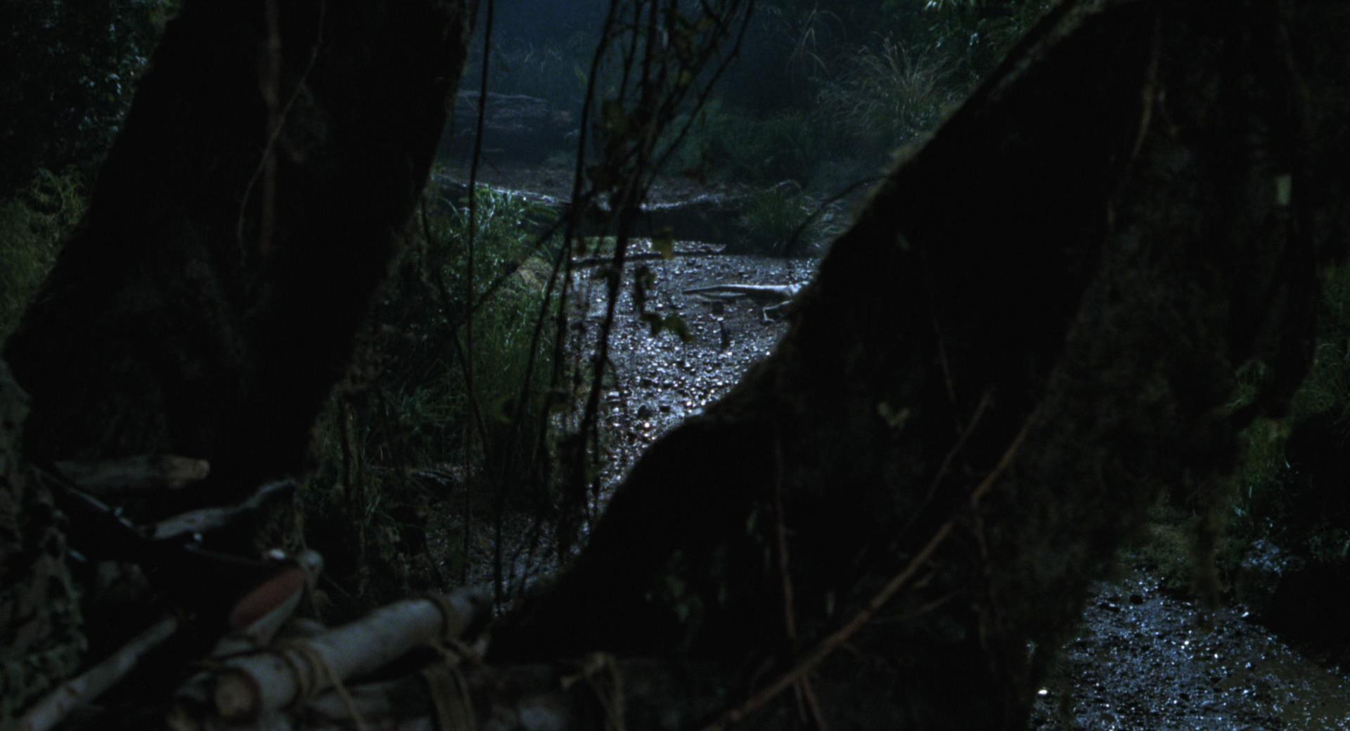 The Lost World Jurassic Park Screencaps are here Jurassic-lost-world-movie-screencaps.com-4893