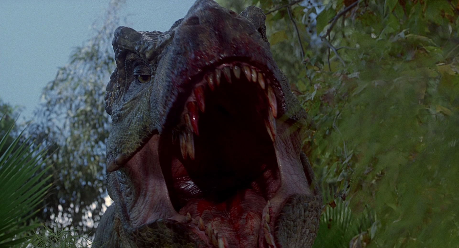 Best and worst moments of Animatronics in the JP quadrilogy?   Jurassic-park3-movie-screencaps.com-3120