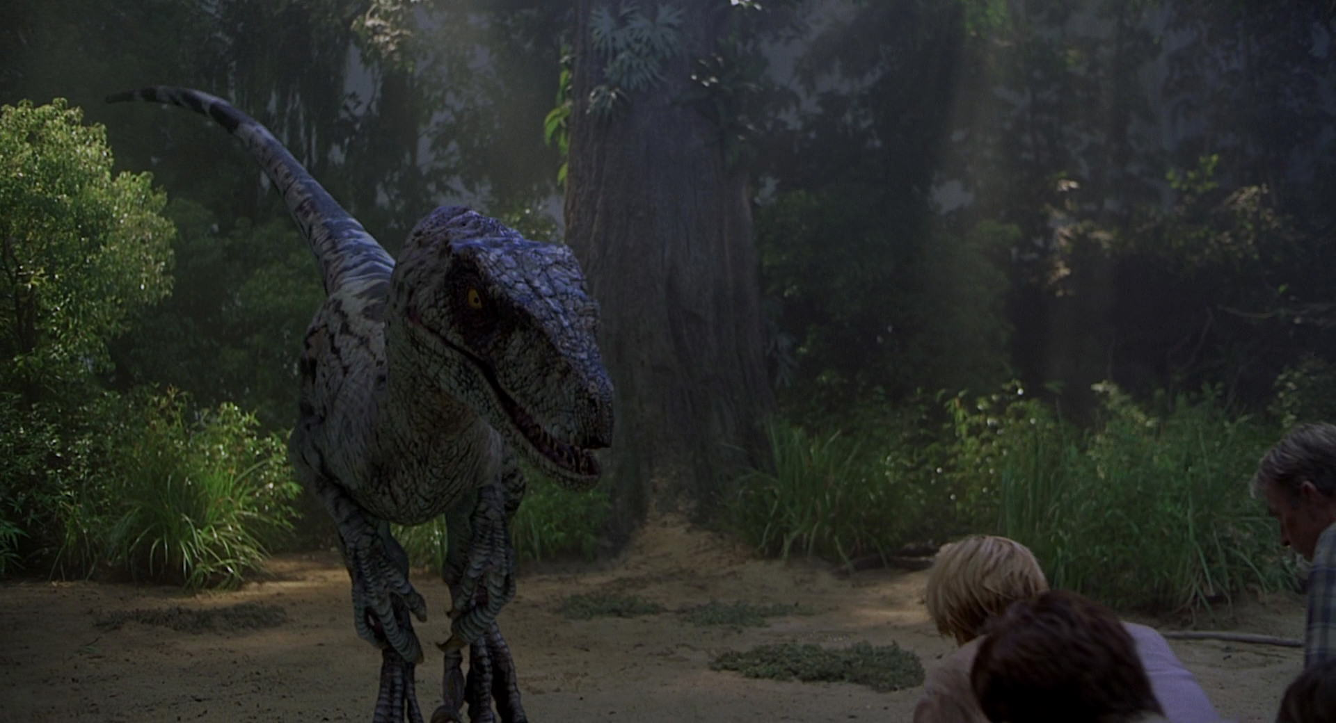 Best and worst moments of CGI in the JP quadrilogy? Jurassic-park3-movie-screencaps.com-9450